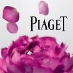 art-piaget-rose-day