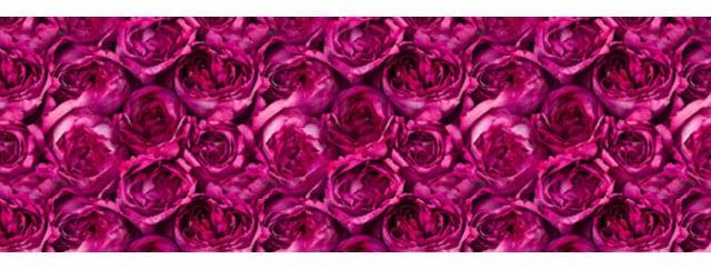 rose-piaget-day-art