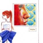 vignette-maelle-amylee