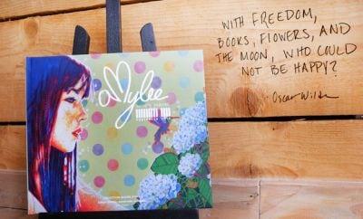 book-artiste-peintre-amylee