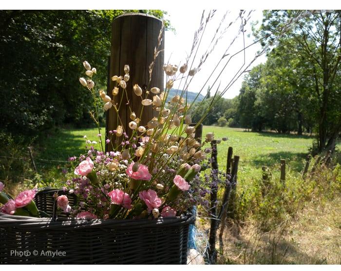 campagne-auvergne-cantal-vacances