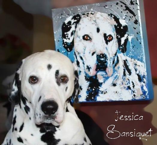 jessica-sansiquet-chien-portrait