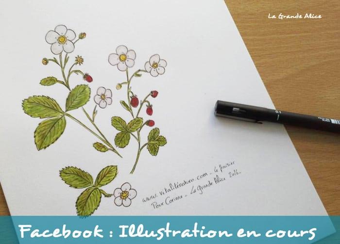 Illustration-lagrandealice